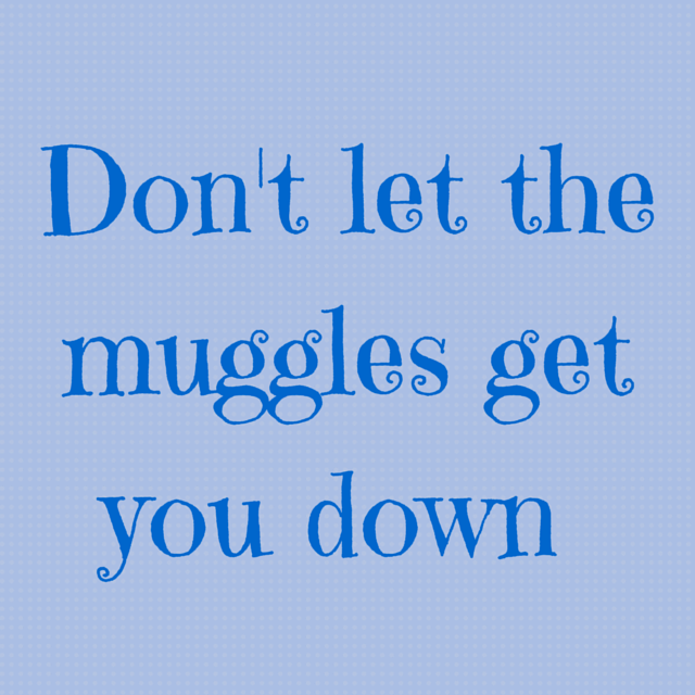don't let the muggles get you down, potter