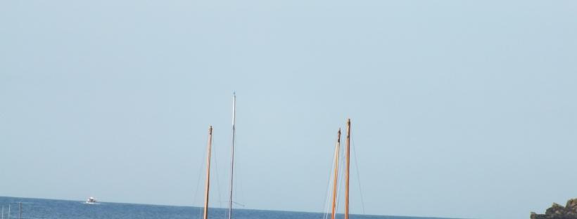 Fowey boats