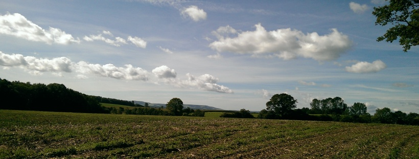 autumn fields, blue skies, clouds